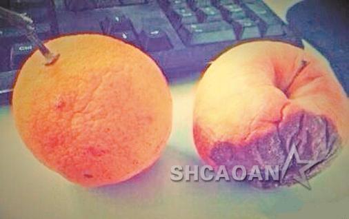 陈乔恩指桑骂槐亏柳橙厚脸皮有关霍建华的微博内容都删光(图)